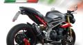 GPR FUCA FURORE CARBONLOOK(公道仕様) シングルローマウント スリップオン マフラー Triumph Speed Triple S/R 2016-  T.87.FUCA