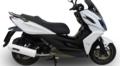 イタリア GPR ALBUS フルエキ マフラー (競技走行専用) KYMCO K-XCT 300 12-15KYM.4.ALB