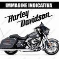 グラフィック デカール BLANCO HARLEY DAVIDSON ハーレー SCREAMIN EAGLE ホワイト