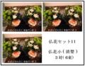 おまかせ仏花小 3対(6束セット)【お届けは本州のみ】