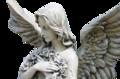 12月7日(土) Angel Lightヒーリング講座