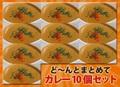 【送料無料】3種のカレー10食とプレーンナン10枚セット