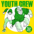 VA / Youth crew 2016 7''緑盤