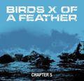 Birds of feather - chapter 5 7""