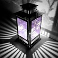 Shadowmoon Lamp 【Feint Purple】