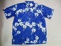 REYN SPOONER レインスプーナー 半袖プルオーバーB/Dシャツ(FROWER ブルー)