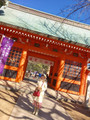 ●6月30日 神社ミニツアー+エンジェル*クリアリングワークショップ