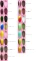 スリーピースルアーズ 3PIECE LURES レベッカ (REBECCA) 1.6g レギュラーカラー-F903