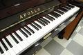 アポロ(APOLLO) SR65 中古ピアノ