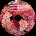 CD版2017年初秋・愛されファッション