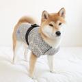 【犬服】日本の夏☆新作国産甚平♪