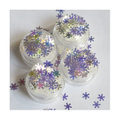 ATELIERRAISIN Frosty Window Snowflake Body Glitter