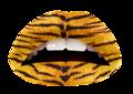 The Tiger(VL)