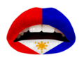 THE FILIPINO FLAG (VL)