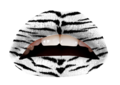THE WHITE TIGER (VL)