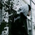 HAIIRO DE ROSSI/FORTE(ハイイロデロッシ/フォルテ)