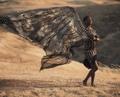 Faux Assuit Black Enchantra Veil