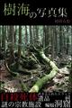 村田らむ「樹海の写真集」