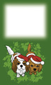 メッセージカード: キャバクリスマス
