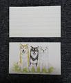 メッセージカード:柴犬(3匹)