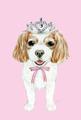 ポストカード:キャバリア[princess]