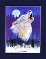 夜の狼・満月に向かって