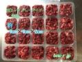 鹿 冷凍 生肉 ミンチ 450gトレータイプ(3.2φ)