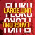 LARGE UNIT / Fluku (PNL038)