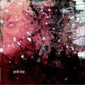 近藤直司、永田利樹、瀬尾高志『petite fleur』(001CD)