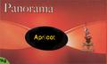 アプリコット パノラマ 水タバコ・シーシャ フレーバー 50g