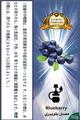 ブルーベリー (Blueberry)パノラマ レモン 50*10個 (500g)