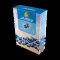 ブルーベリーミント ( Blueberry mint ) アルファーヘル ALFAKHER シーシャ・水タバコ用フレーバー 50g