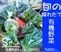 有機野菜Mセット