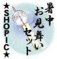 ★暑中お見舞いセット2015★