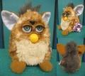 Furby(1998/E)