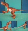J.P/Velociraptor(Loose)