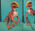 J.P/Pachycephalosaurus(A/Loose)