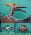 J.P/Pteranodon(A/Loose)