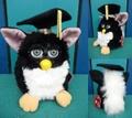 Furby(1998/A)
