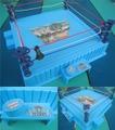 WWF Ring playset