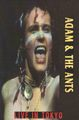 ADAM&THE ANTS / LIVE IN JAPAN 1981 ORIGINAL MASTER EDITION