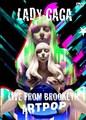 LADY GAGA / LIVE IN BROOKLYN,NEW YORK 2013