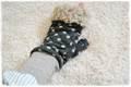 ★ダウンロード用★ミシンで作るミトン手袋(大人フリーサイズ)