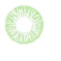 ふちなし単色 ColourVUE BASIC【GREEN】緑色 2枚組 度なし