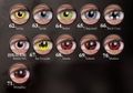 コスプレカラコン【Crazy Lens】全86色からお好きな色を!!同色2枚1セット