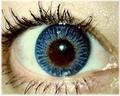 ColourVUE BLEND【BLUE】自然カラコン 2枚1セット