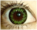 ColourVUE BIGEYES【PARTY GREEN】15mm緑コン 2枚1セット