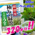 【超お徳用】静岡県産100% 極みの緑茶・大容量2倍☆ナント500mlペットボトル 320本分 !!