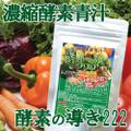 222種類もの植物! 酵素をギュギュツ~ 濃縮酵素青汁 ☆ 酵素の導き222 100g