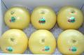 晩白柚 Lサイズ(6個入り)